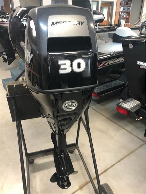 Mercury Marine 30 hp EFI in Appleton, Wisconsin - Photo 1