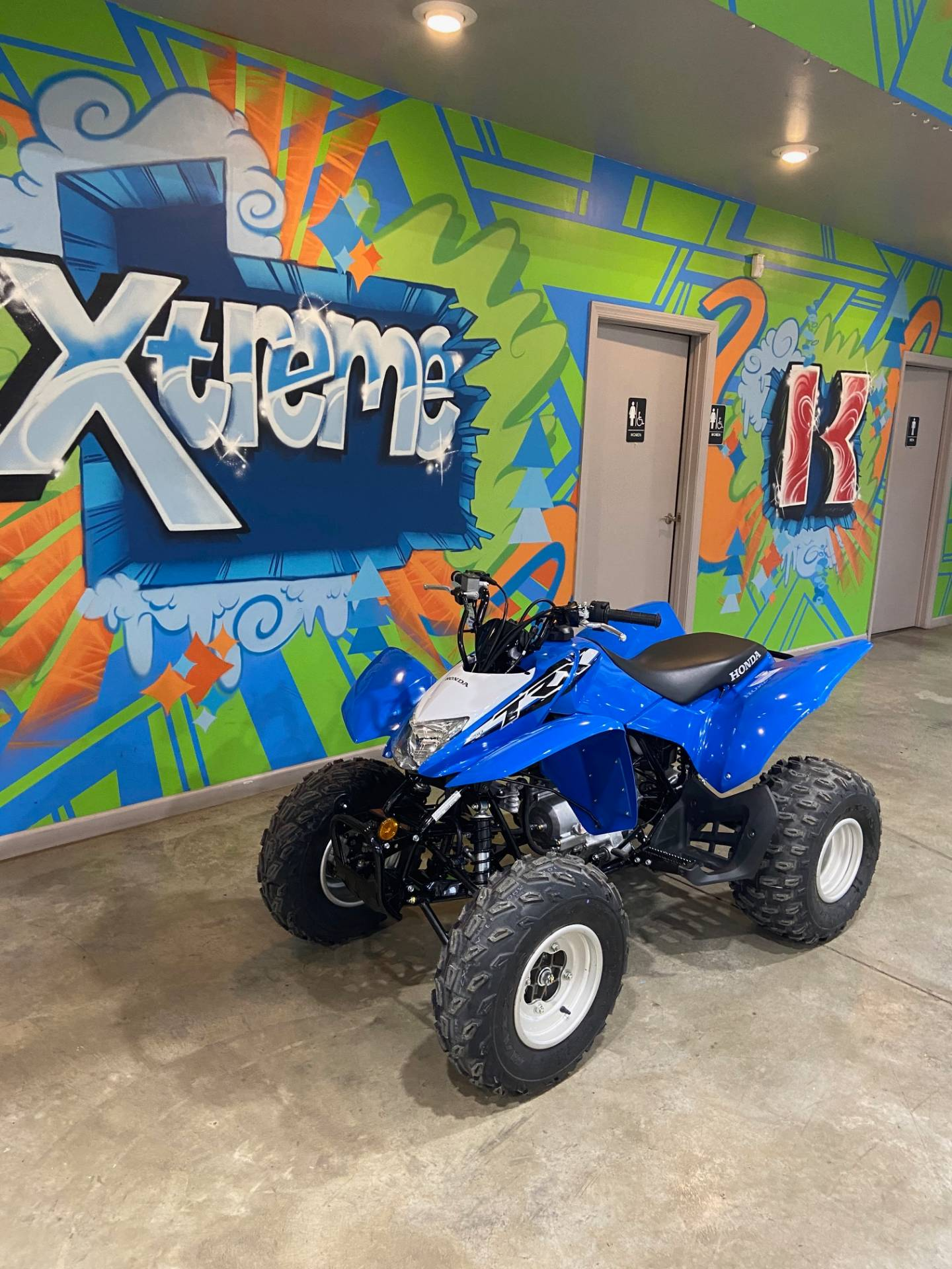 2020 Honda TRX250X in Claysville, Pennsylvania - Photo 3