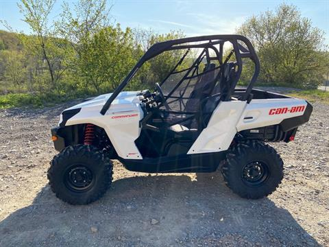 2020 Can-Am Commander 800R in Claysville, Pennsylvania - Photo 3
