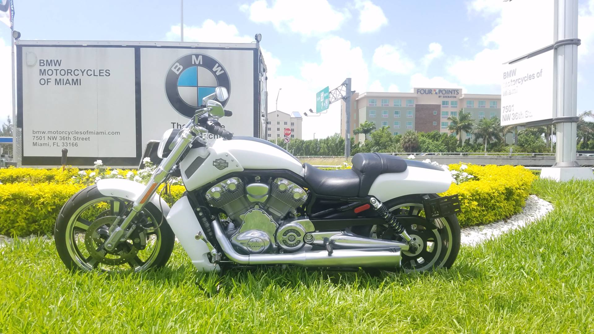 2011 V-Rod Muscle
