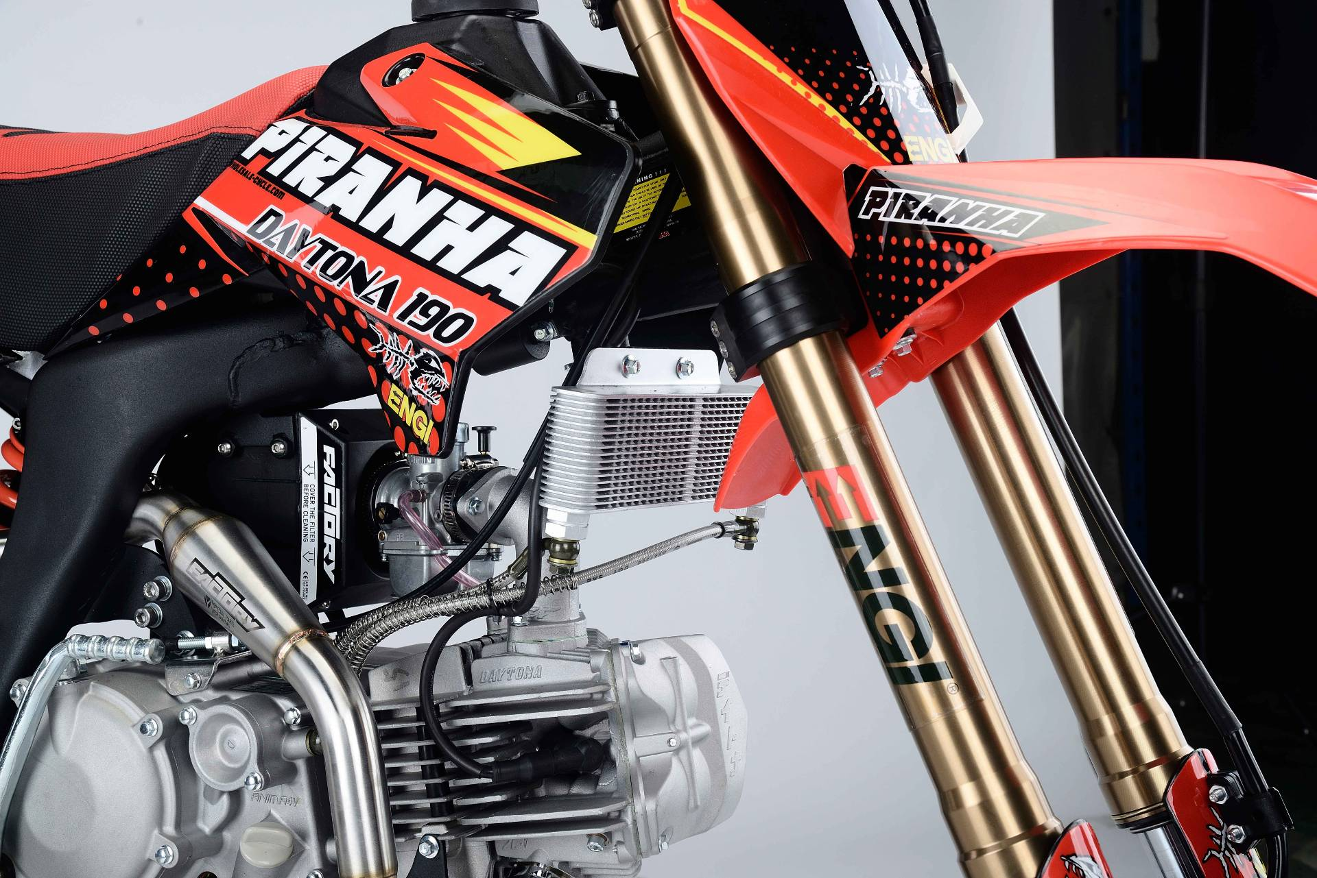 2018 Piranha Pit Bikes Daytona  in Mount Vernon, Ohio