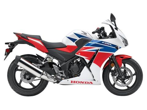 2015 Honda CBR®300RLF in Mount Vernon, Ohio