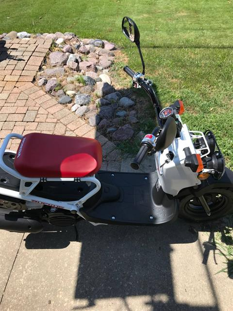 2019 Honda Ruckus in Sterling, Illinois - Photo 2