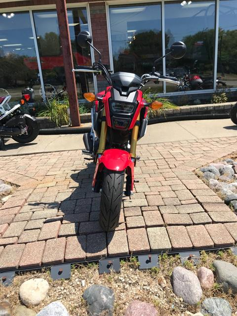 2019 Honda Grom in Sterling, Illinois - Photo 1