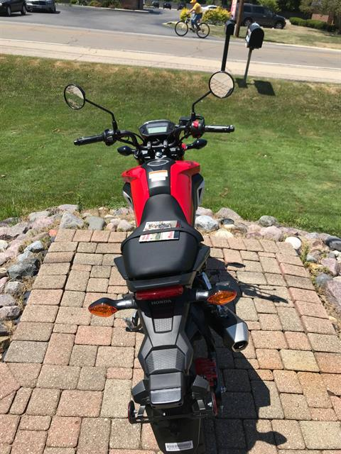 2019 Honda Grom in Sterling, Illinois - Photo 4