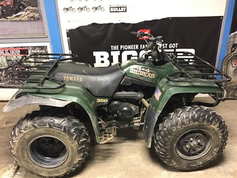 1999 YAMAHA Big Bear 350 in Sterling, Illinois - Photo 1