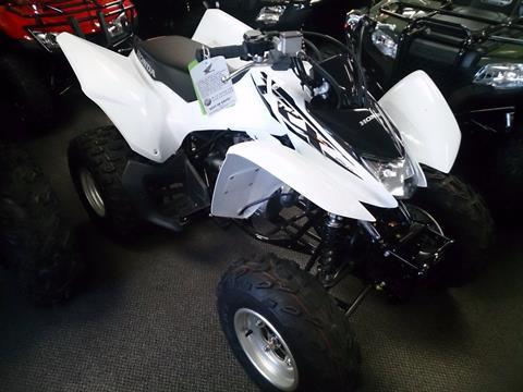2017 Honda TRX250X in Sterling, Illinois