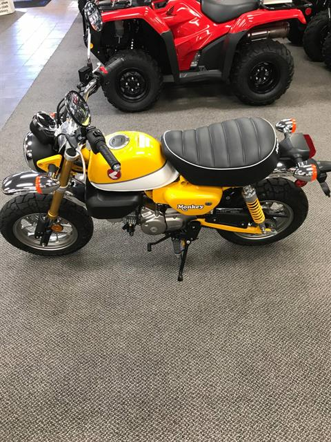 2019 Honda Monkey in Sterling, Illinois - Photo 3