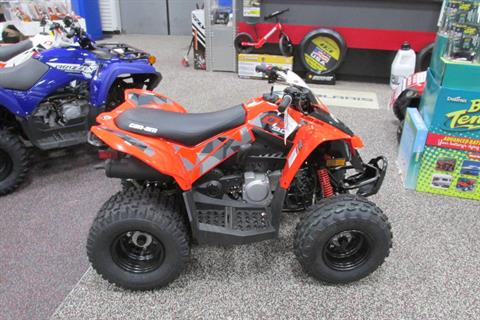 2018 Can-Am DS90 in Springfield, Ohio