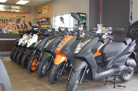 2019 Kymco Super 8 50X in Sturgeon Bay, Wisconsin