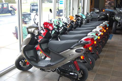 2019 Genuine Scooters Buddy 50 in Sturgeon Bay, Wisconsin