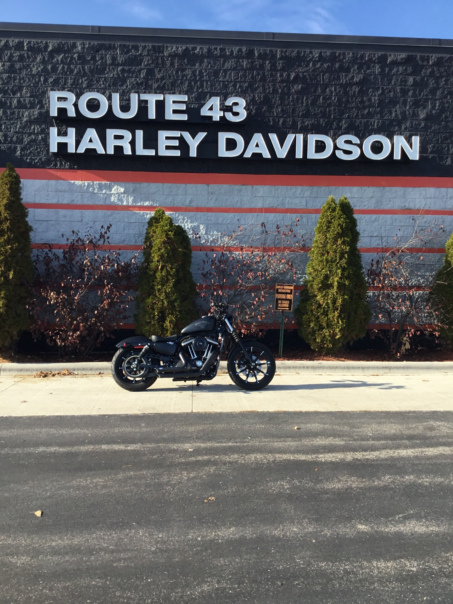 2017 Harley-Davidson XL883N in Sheboygan, Wisconsin - Photo 1