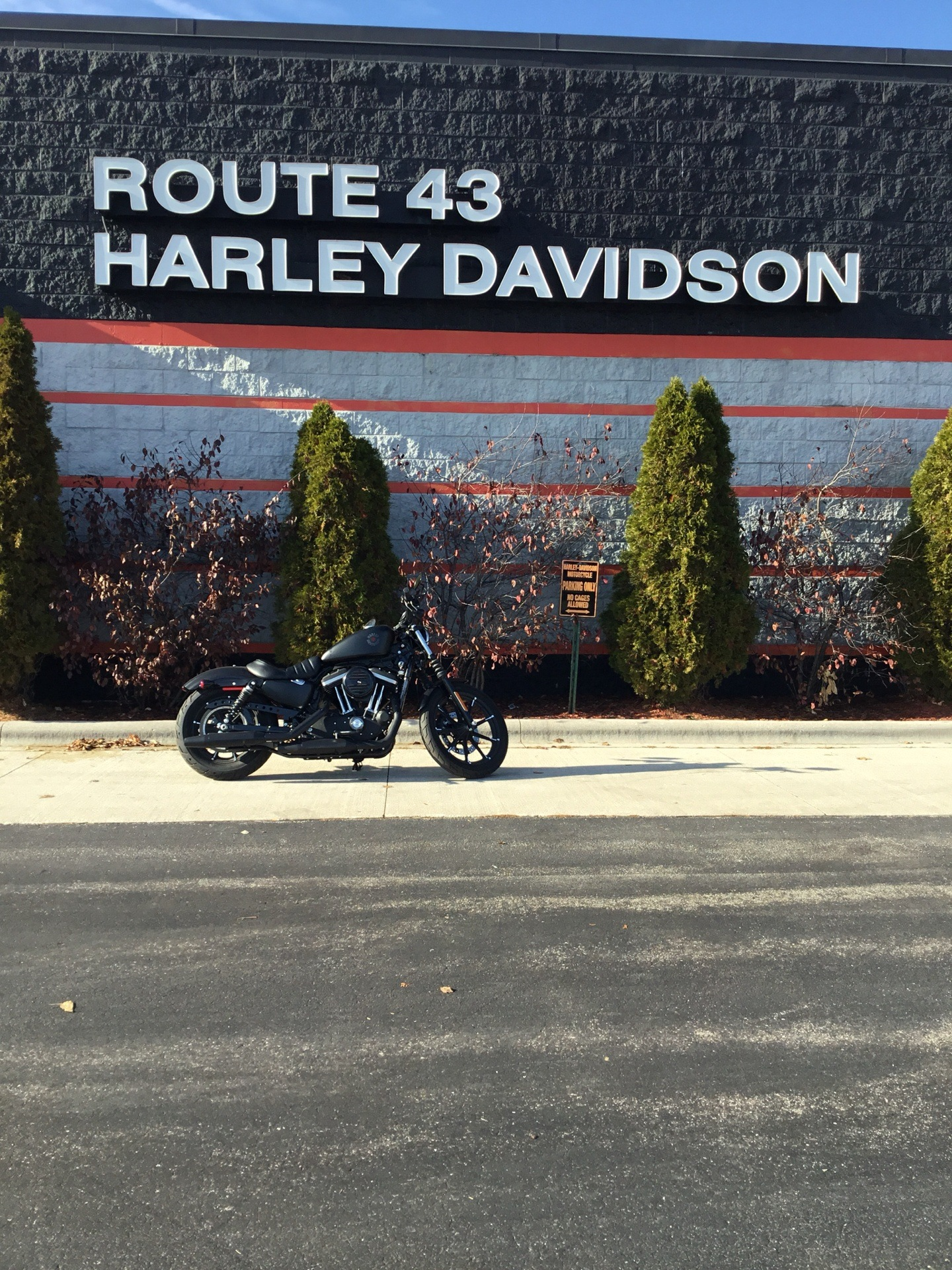 2019 Harley-Davidson XL883N in Sheboygan, Wisconsin - Photo 1