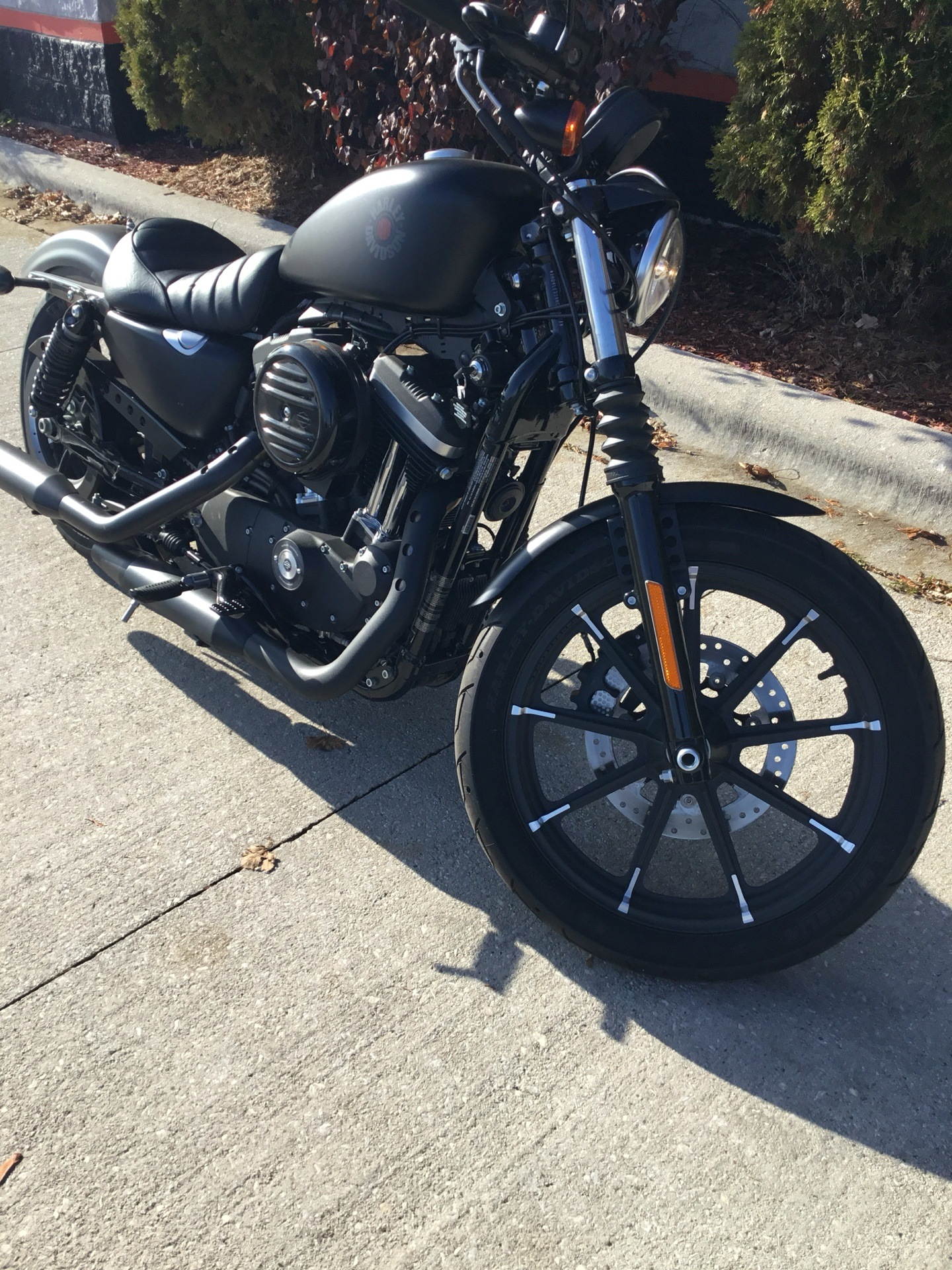 2019 Harley-Davidson XL883N in Sheboygan, Wisconsin - Photo 4