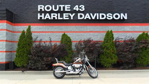 2008 Harley-Davidson Softail® Custom in Sheboygan, Wisconsin
