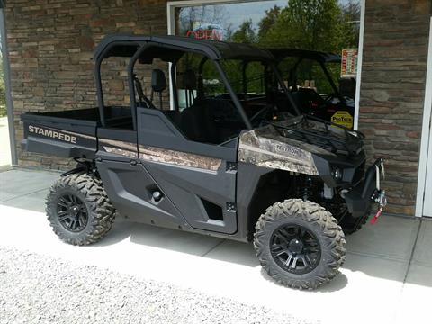 2019 Arctic Cat Stampede Hunter Edition in Portersville, Pennsylvania