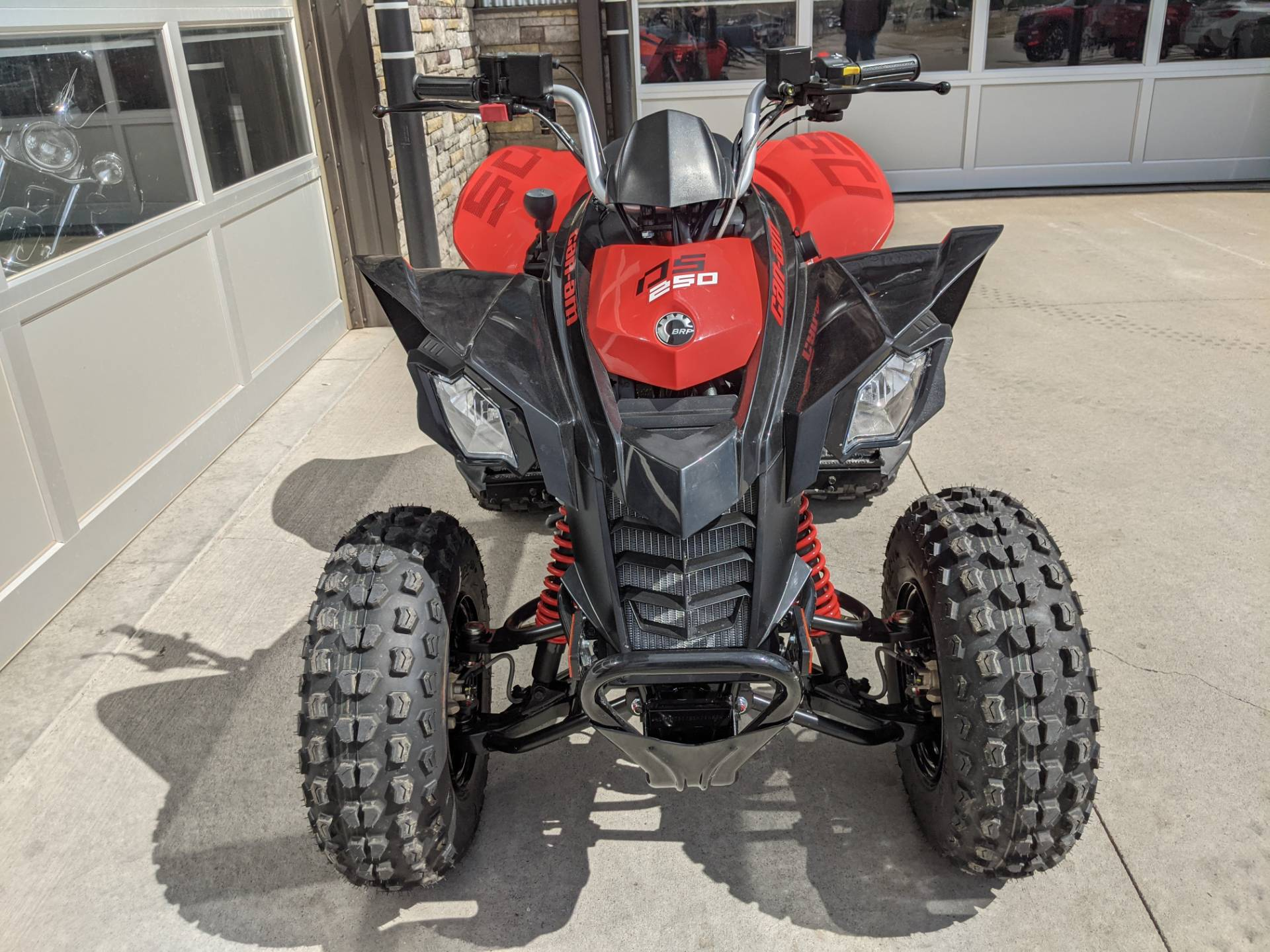 2021 Can-Am DS 250 in Rapid City, South Dakota - Photo 5