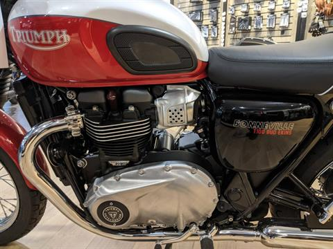 2020 Triumph Bud Ekins T100 in Rapid City, South Dakota - Photo 8