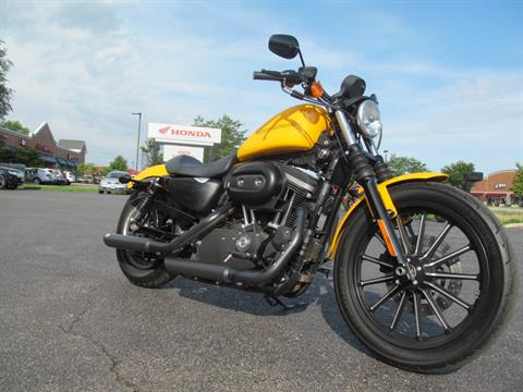 2011 Harley-Davidson Sportster® Iron 883™ in Crystal Lake, Illinois - Photo 3
