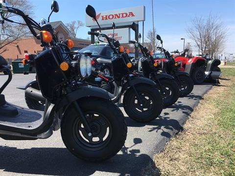 2018 Honda Ruckus in Crystal Lake, Illinois