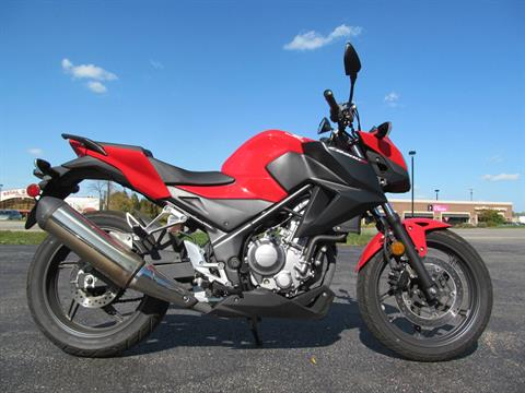 2015 Honda CB300F in Crystal Lake, Illinois - Photo 1