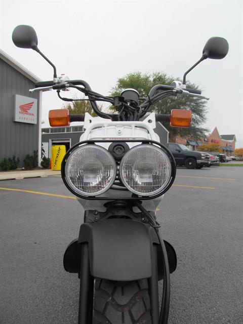 2013 Honda Ruckus® in Crystal Lake, Illinois