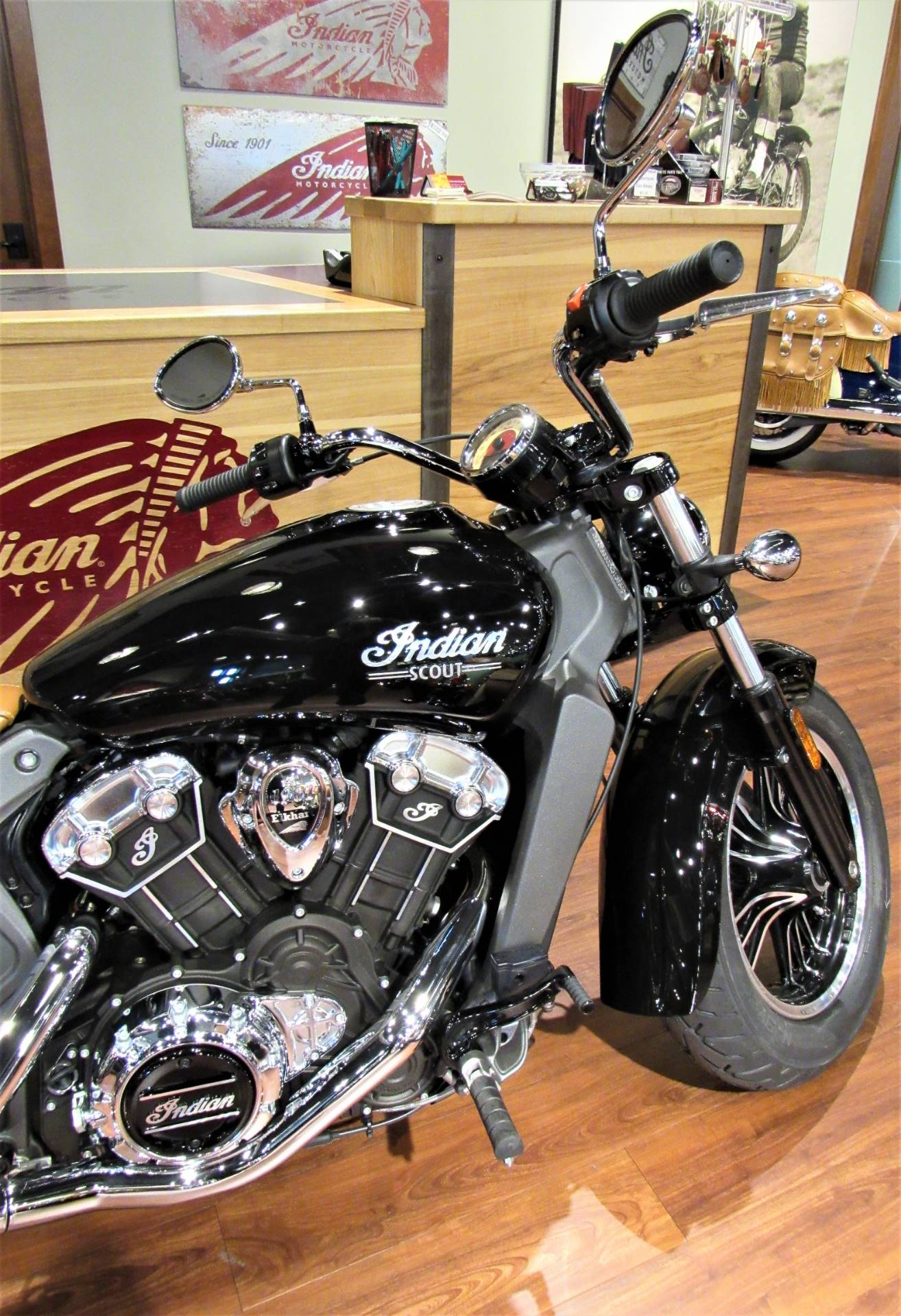 2019 Indian Scout® in Elkhart, Indiana