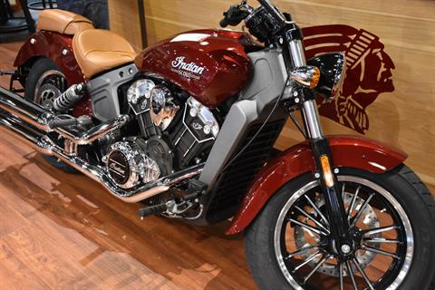 2018 Indian Scout® ABS in Elkhart, Indiana