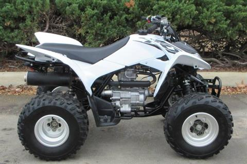 2017 Honda TRX250X in Sumter, South Carolina