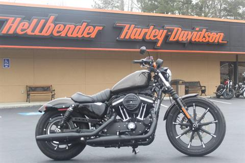2020 Harley-Davidson Iron 883™ in Marietta, Georgia - Photo 1