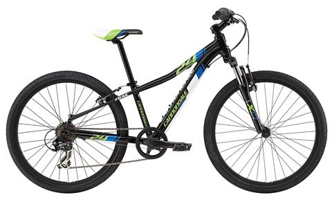 2017 Cannondale Trail 24 Boy's in Howell, Michigan