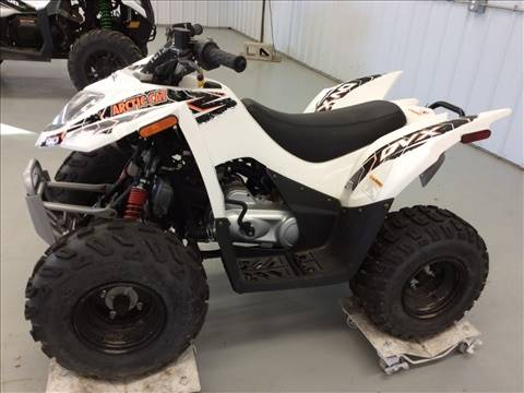 2016 Arctic Cat DVX 90 in Gaylord, Michigan
