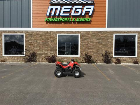 2013 Arctic Cat DVX™ 90 in Gaylord, Michigan