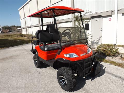 2021 Advanced EV AEV 4L (Electric Lifted) in Lakeland, Florida - Photo 1