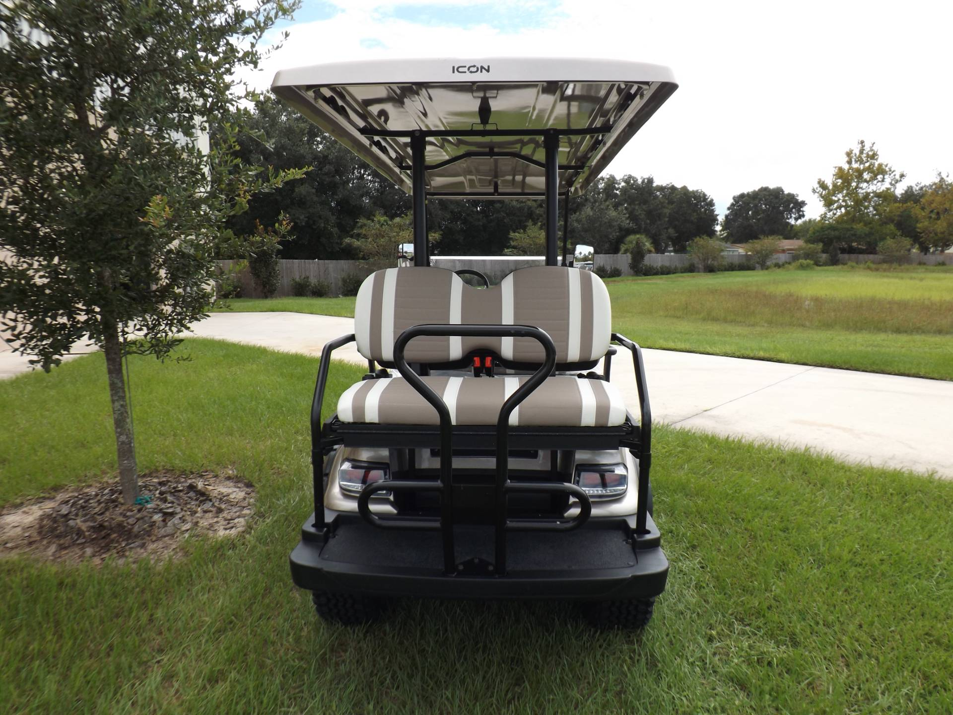 2020 Icon i60L Electric (Lifted) in Lakeland, Florida - Photo 4