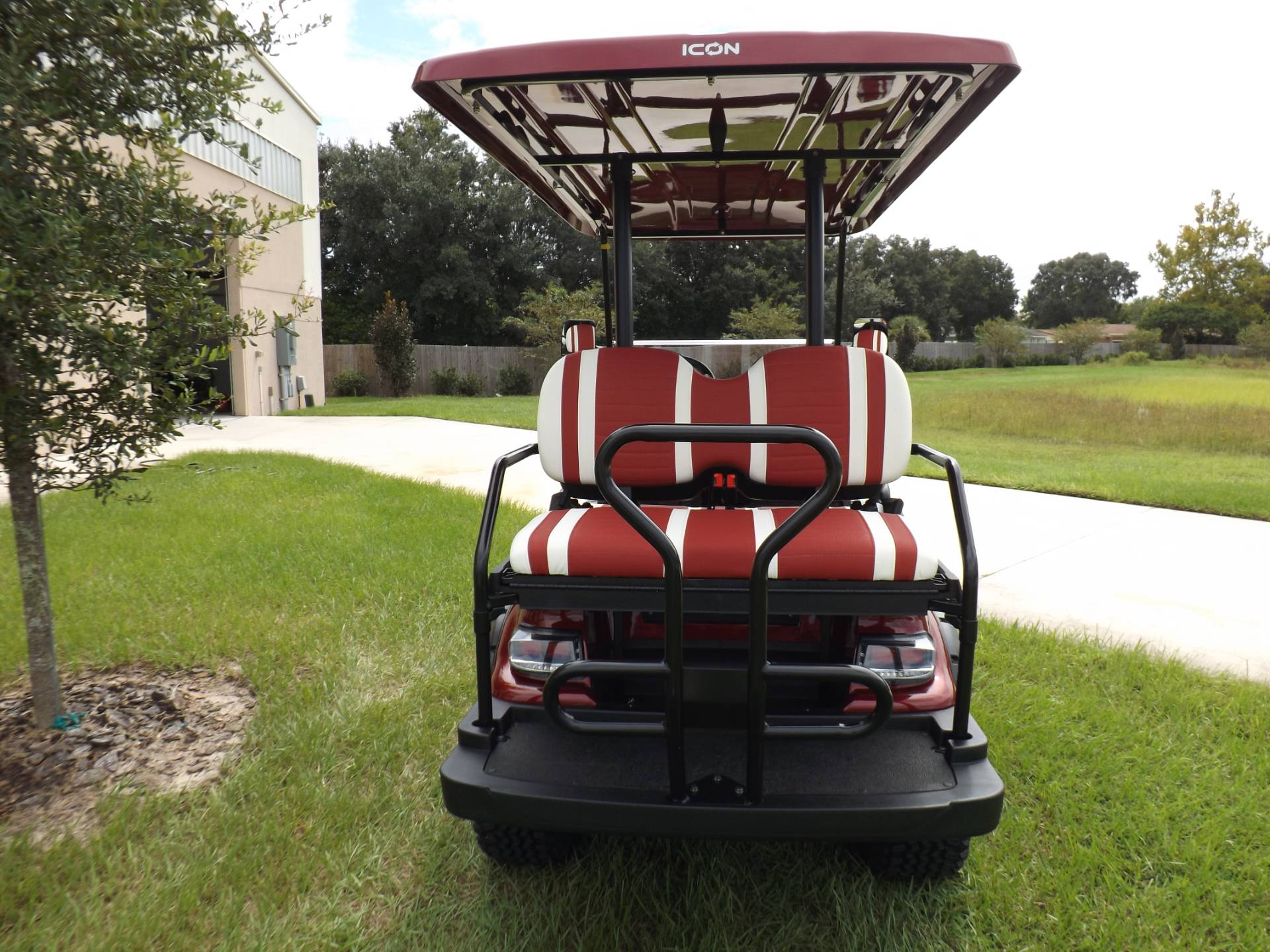 2020 Icon i40L Electric (Lifted) in Lakeland, Florida - Photo 4