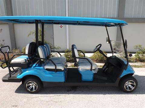 2020 Icon i60 Electric in Lakeland, Florida - Photo 3