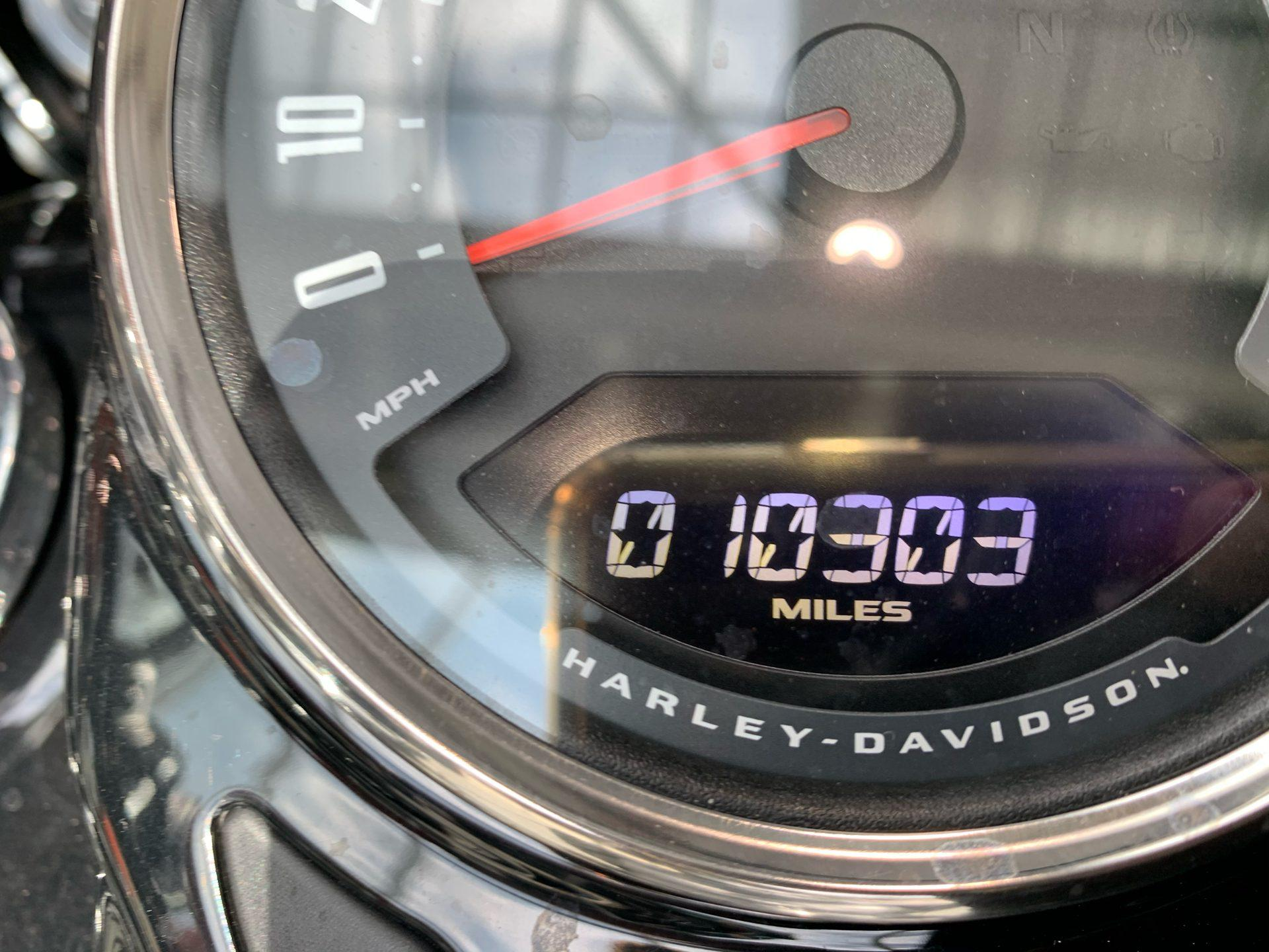 2019 Harley-Davidson FLSTC in Columbia, Tennessee - Photo 2