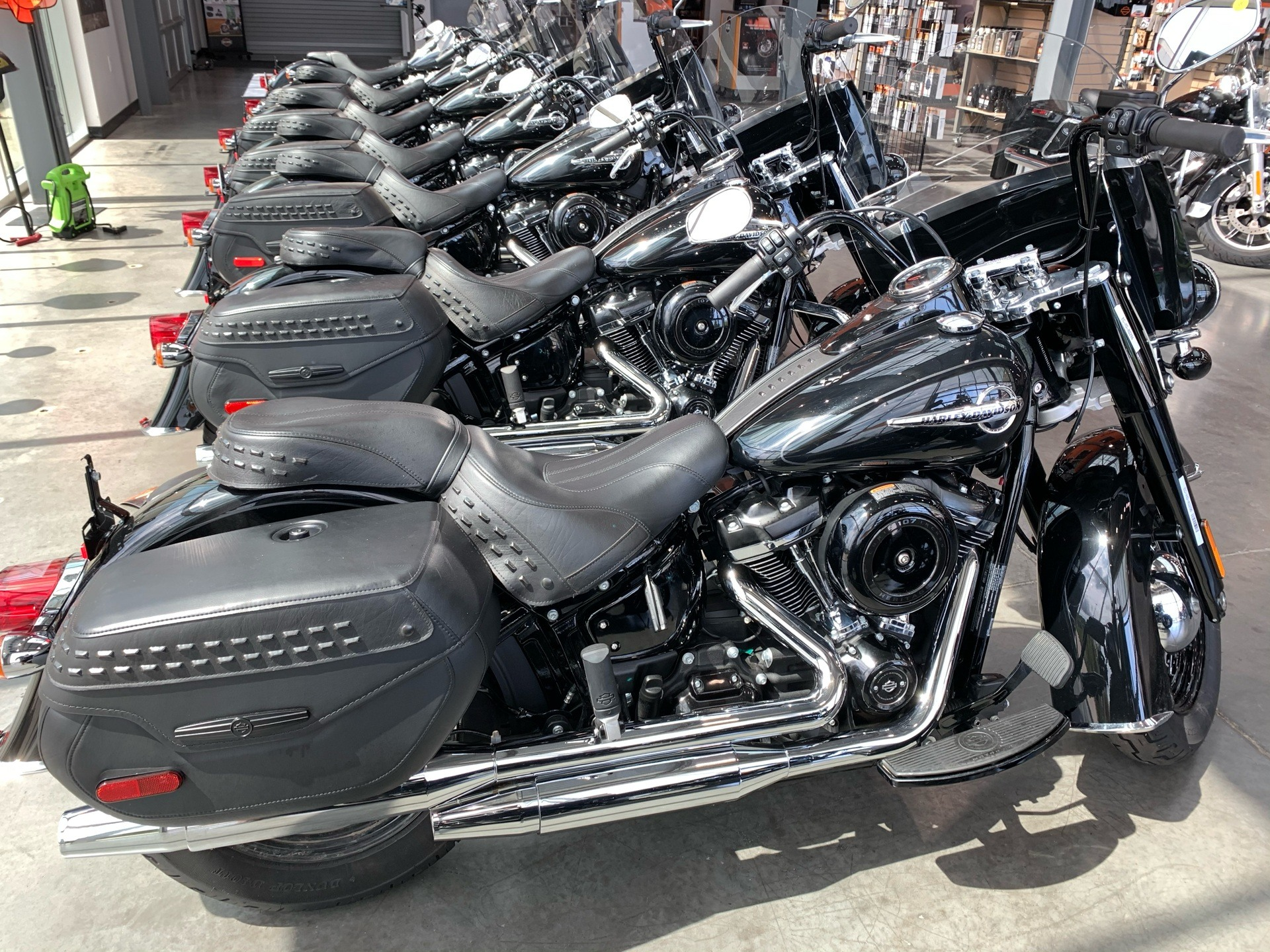 2019 Harley-Davidson FLSTC in Columbia, Tennessee - Photo 1