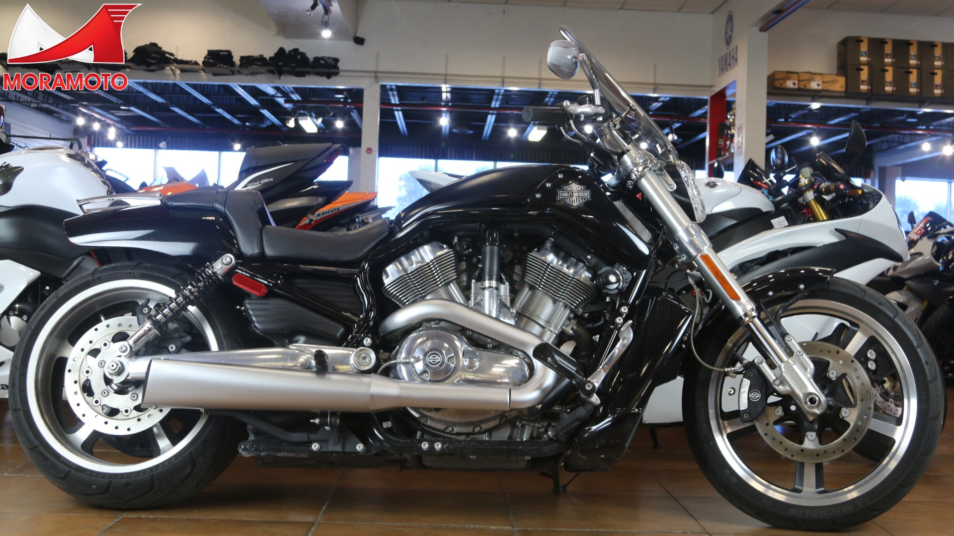 2015 Harley-Davidson V-Rod Muscle® in Pinellas Park, Florida