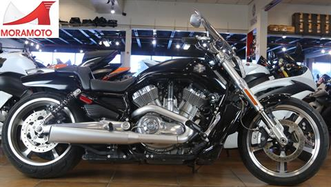 2015 Harley-Davidson V-Rod Muscle® in Pinellas Park, Florida - Photo 1