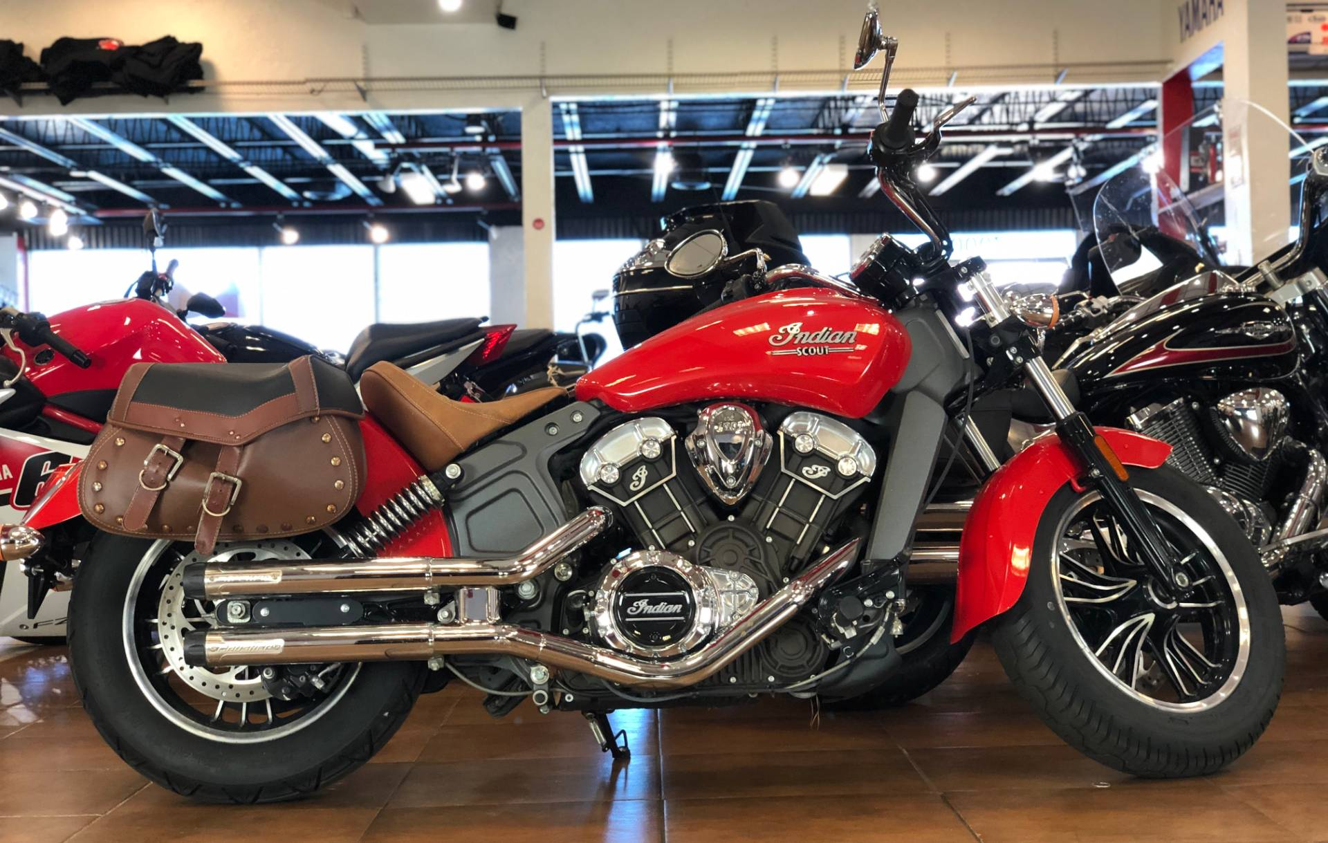 2016 Indian Scout™ in Pinellas Park, Florida - Photo 1