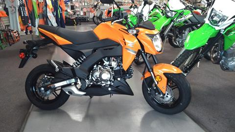 2019 Kawasaki Z125 Pro in Dalton, Georgia - Photo 1