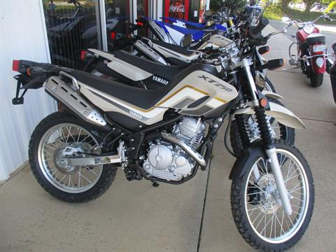2020 Yamaha XT250 in Hendersonville, North Carolina - Photo 1