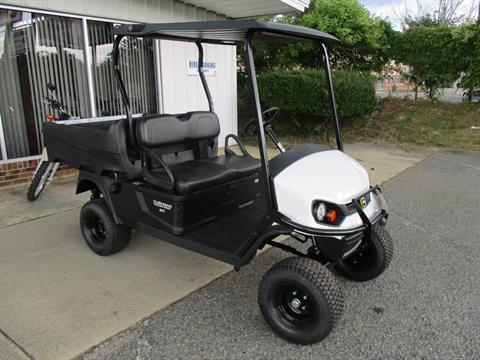 2020 Cushman 1200X in Hendersonville, North Carolina