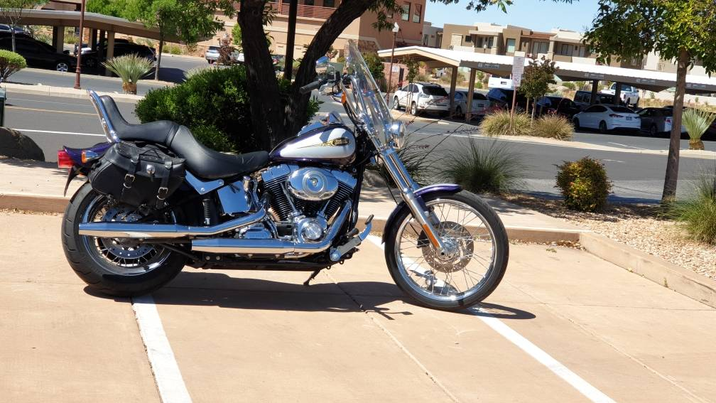 2009 Harley-Davidson Softail® Custom in Washington, Utah - Photo 3