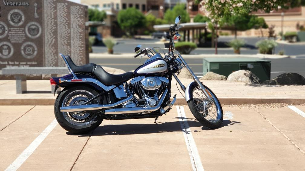 2009 Harley-Davidson Softail® Custom in Washington, Utah - Photo 1