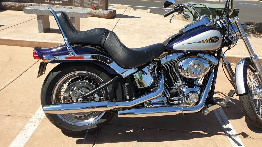 2009 Harley-Davidson Softail® Custom in Washington, Utah - Photo 14