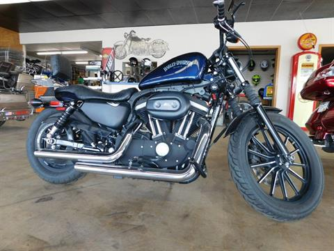 2013 Harley-Davidson Sportster® Iron 883™ in Loveland, Colorado
