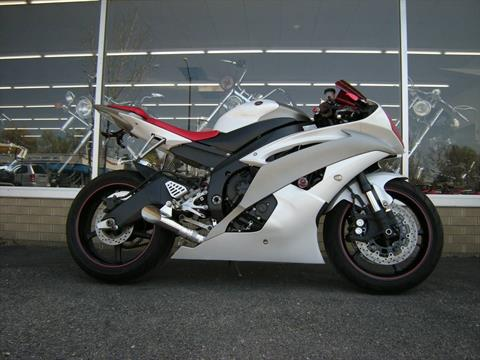 2009 Yamaha YZF-R6 in Loveland, Colorado